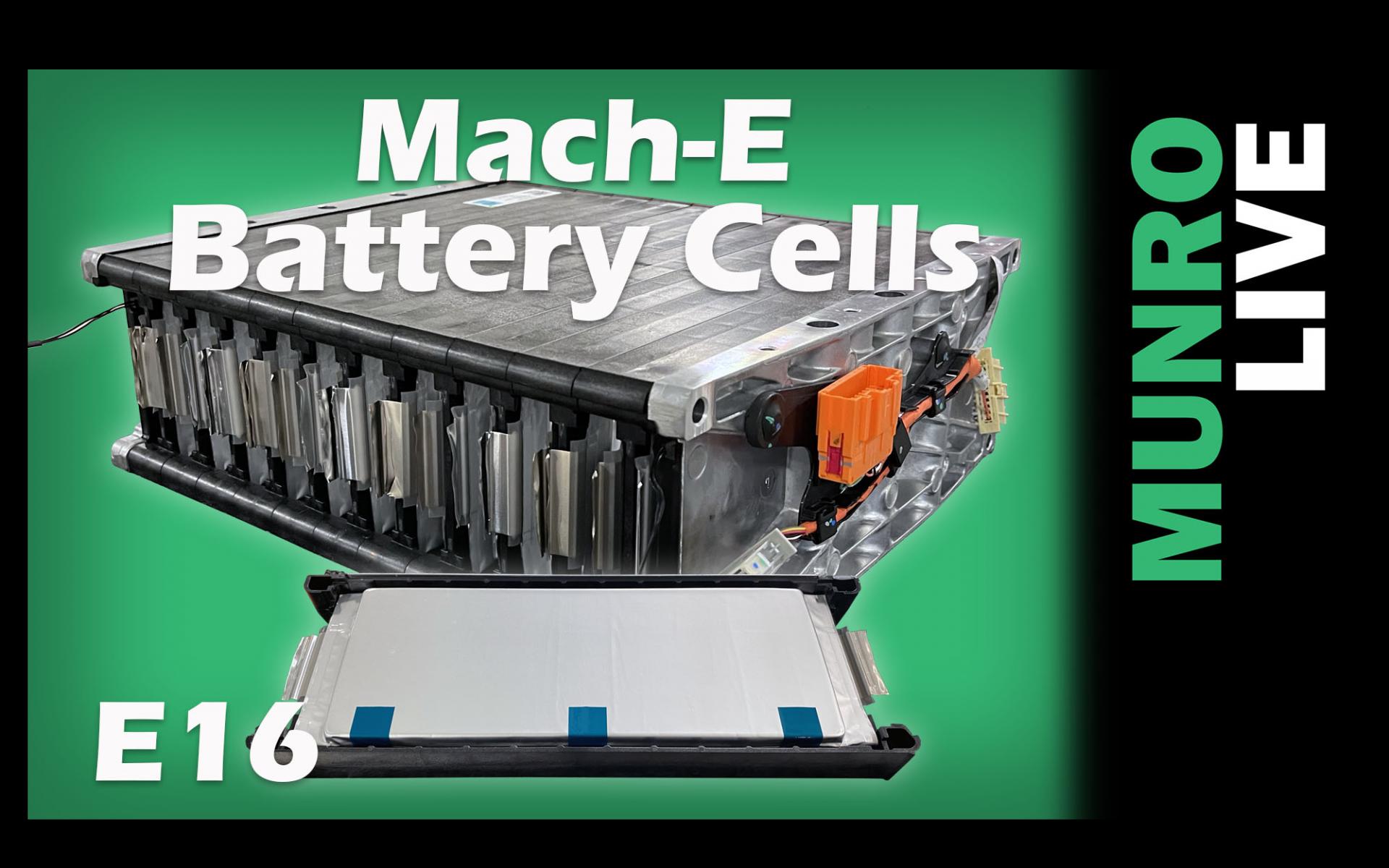 Mach-E Battery Cells